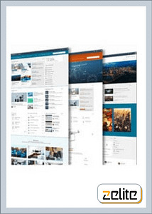 Custom Web Application Services by Zelite